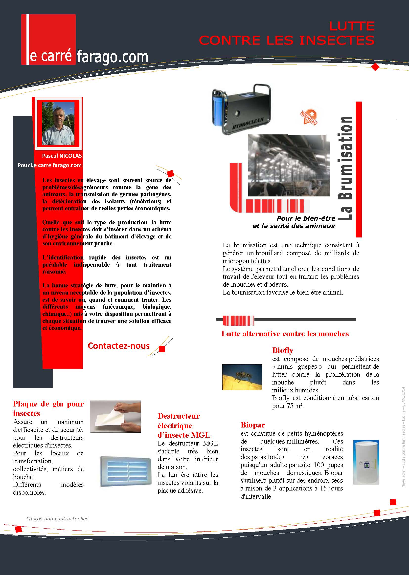 Newsletter désinsectisation